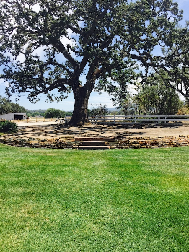 Santa Margarita Ranch Ceremony